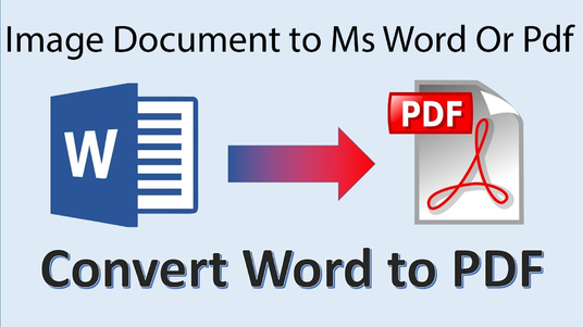 Convert PDF  Or Image to Word Editable Document Reformat in Docx File, Powerpoint, Excel