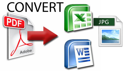 cccccc-Convert PDF  Or Image to Word Editable Document Reformat in Docx File, Powerpoint, Excel