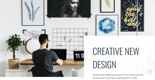 I will redesign your WordPress website and make it professional