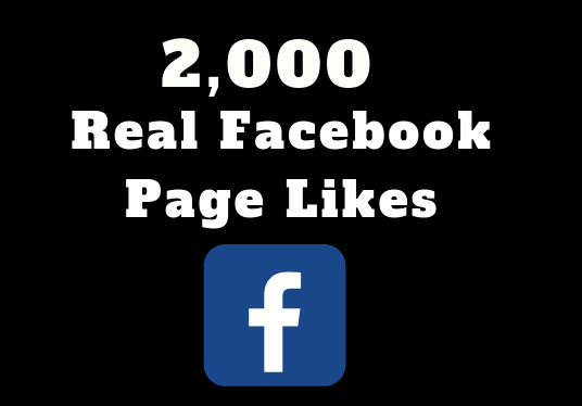 I will provide 2000 real Facebook page likes