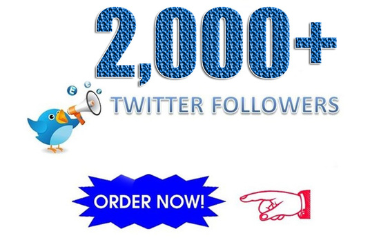 I will Give you 2,000+ High Quality Twitter Followers
