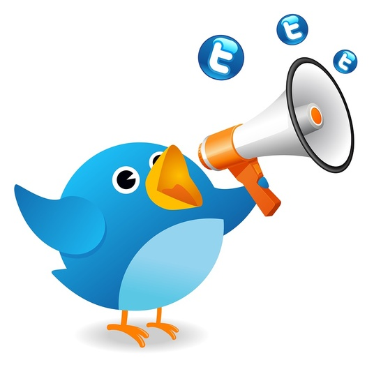 I will Give you 500+ Real & Active Looking Twitter Followers