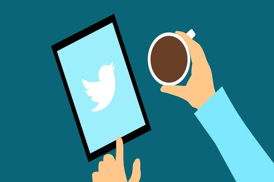 I will do organic twitter growth management and promotion