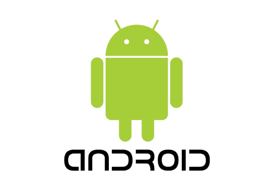 I will create an Android Web App for your website