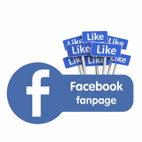 I will Add 300 likes to your facebook page