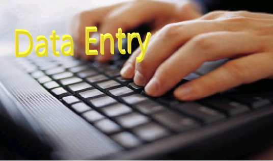 I will do any type of data entry work for your business