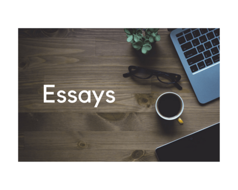 provide Essay writing service