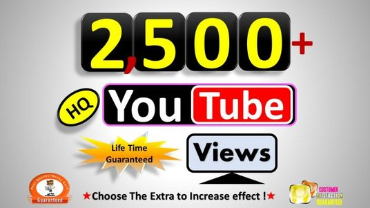 I will Provide  2500+ Real  Youtube Video Views