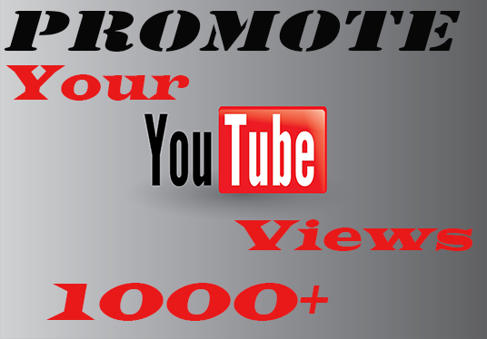 I will do 1000+ youtube  views for you