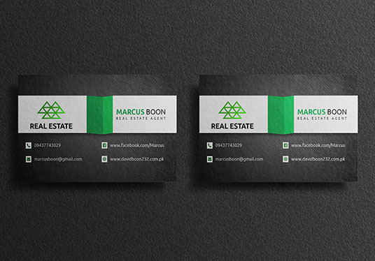 I will design a stunning business card for you