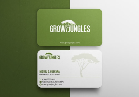 provide professional business card design services