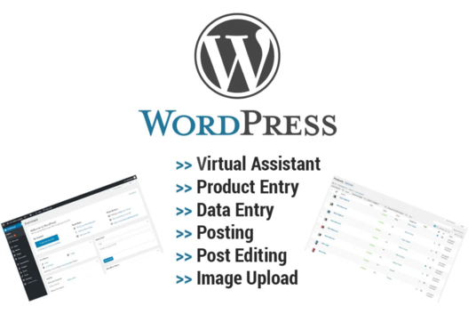 I will do wordpress data entry