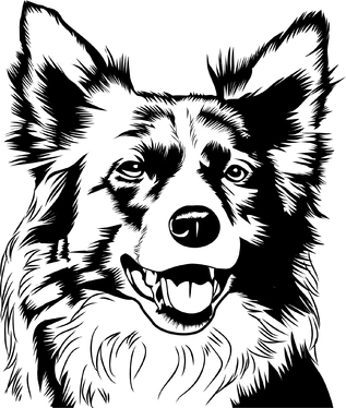 create your photo into line art