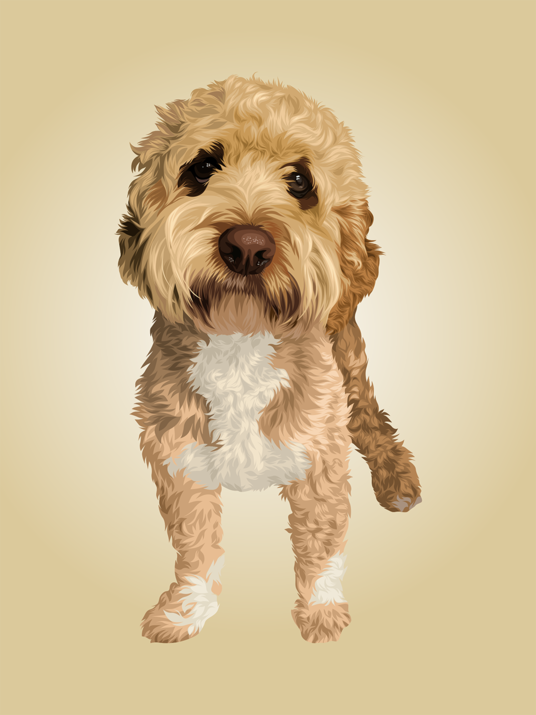 I will Draw Your Pet Photo Into A Vector Illustration