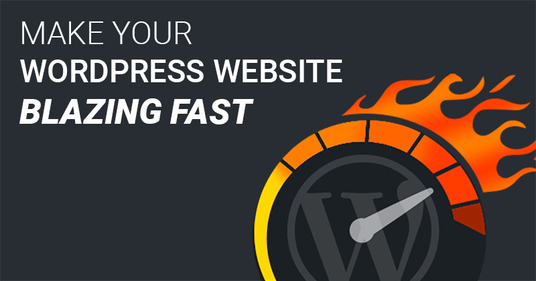 do speed Optimization on WordPress website