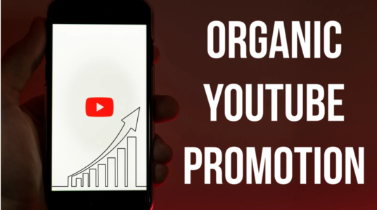 I will do professional organic top youtube video promotion