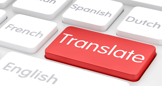 I will translate your wordpress website in cheap price