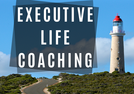 I will be your executive life coach and your accountability coach for success,  two 45 min sessio