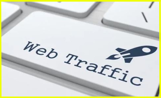 I will drive real targeted web traffic visitors