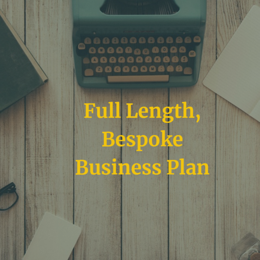 I will write you a professional business plan and marketing plan
