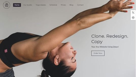 I will create clone duplicate and rebuild or redesign your existing WordPress website within 2 da