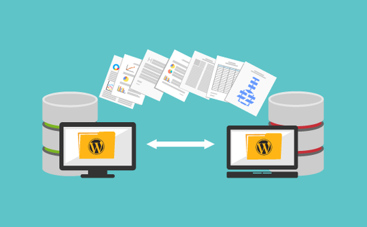 clone, migrate or redesign your WordPress website in 2 days