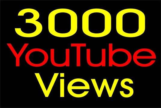 I will provide Best YouTube video promotion with safe 3000+ USA targeted audience
