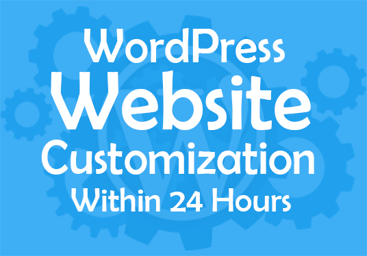 I will precisely customize your WordPress website within 24 hours