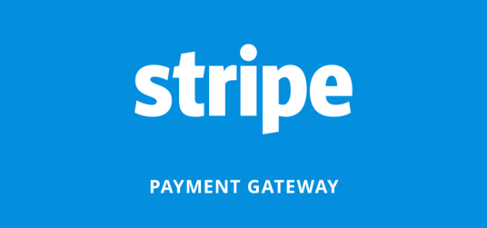 I will add stripe or Paypal payment to your website
