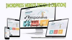 I will design or create any kind of website by WordPress
