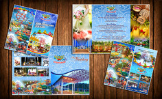 I will do creative poster, flyer and brochure design within 24 hours