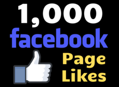 I will give you 1000 Facebook Page Likes to kickstart your FB Page