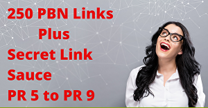 I will boost your rank with 250+ web 2.0  PBN Links