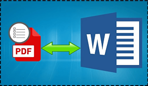 I will convert pdf to word or excel, word or excel to pdf in 24 hours