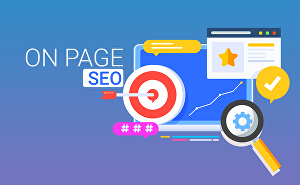 I will do complete white hat onpage SEO on your website