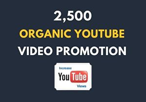 I will get 2,500 organic youtube video views