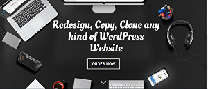 I will clone, redesign, copy a website for you by WordPress