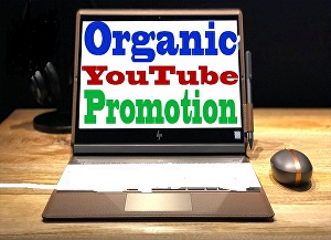 I will provide you 1000+ real and organic USA viewers