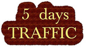 I will   drive Unlimited organic real traffic for 5 days to your STORE + extras