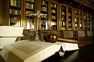 I will help in legal research, case brief and essay writing
