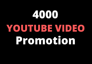 I will give you 4000+ Youtube video views