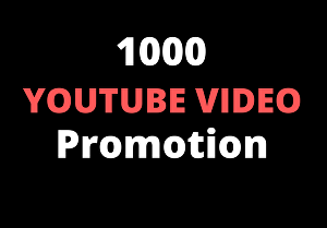 I will provide you 1000+ Youtube video views