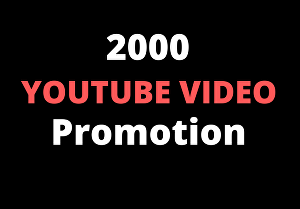 I will provide you 2000+ Youtube video views