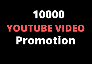I will provide you 10000+ Youtube video views