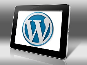 I will install WordPress, WordPress theme and Setup Plugins for your Website