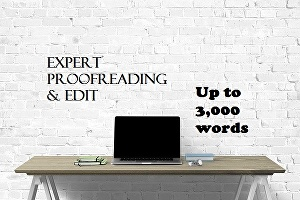I will professionally proofread and edit up to 3,000 words of your article or blog