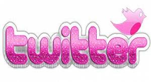 I will give you 4,000 twitter followers