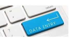 I will do data entry and copy typing jobs