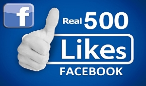 I will give you 500 Facebook likes