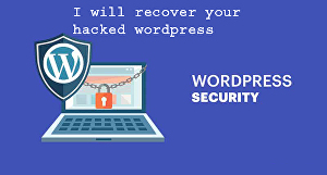 I will remove malware and recover your hacked wordpress website, security